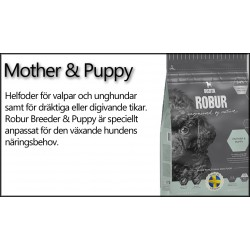 ROBUR MOTHER & PUPPY
